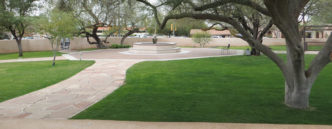 park grass landscaping image